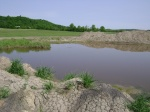 The pond level is shown here just before the Eastern Paddy was prepped for transplanting.